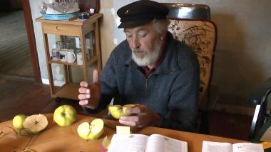 2014 Apfelprobiertrag 1