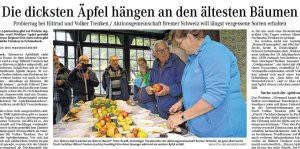 Dicke_Aepfel-Norddeutsche,20.10.14_v