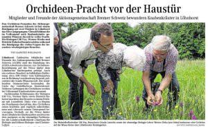 Orchideen-Norddeutsche_28.05.14_v